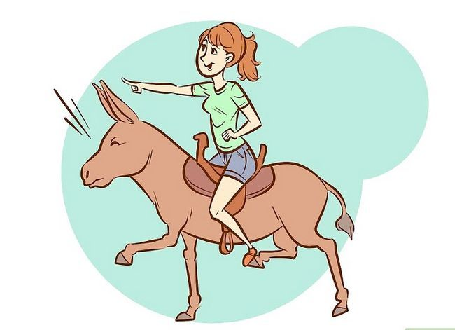 Imagen titulada Ride a Donkey Step 10